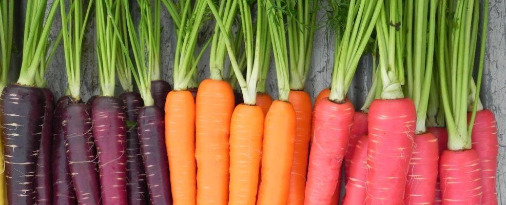 Corso a 4 mani: Verdure invitanti e giocose